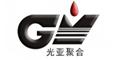 四川光亚聚合物化工专利规划布局设计项目